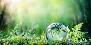 Sostenibilità, l'impegno del Gruppo EET non si ferma